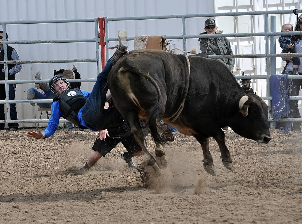 Horace Langford Jr. / Pahrump Valley Times  High school bull rider Kyle Marty gets bucked off his bull on March 5. The Pahrump High school rodeo team is back in action and if you want to see some  ...