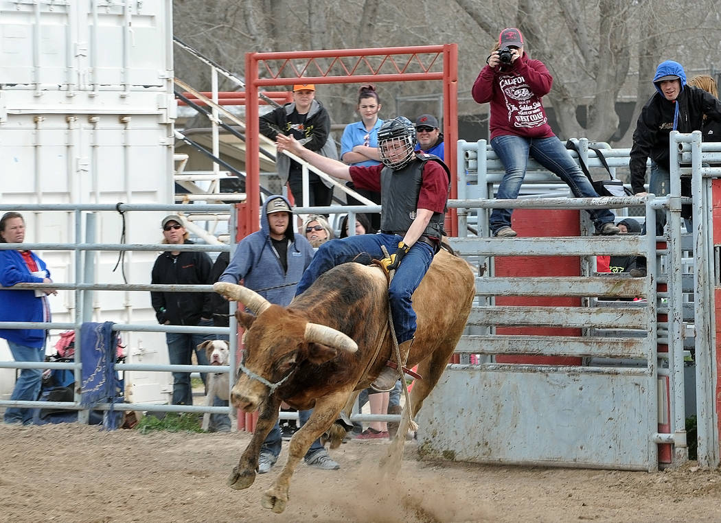 Pahrump bull rider Aidan Medici going for the eight seconds on March 5 at the rodeo arena during a practice run.Horace Langford Jr. / Pahrump Valley Times