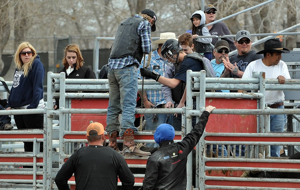 Alex Justin getting prepped for his bull ride sitting in the chute. Bull riding practice for the Pahrump Valley High School rodeo team has returned.Horace Langford Jr. / Pahrump Valley Times