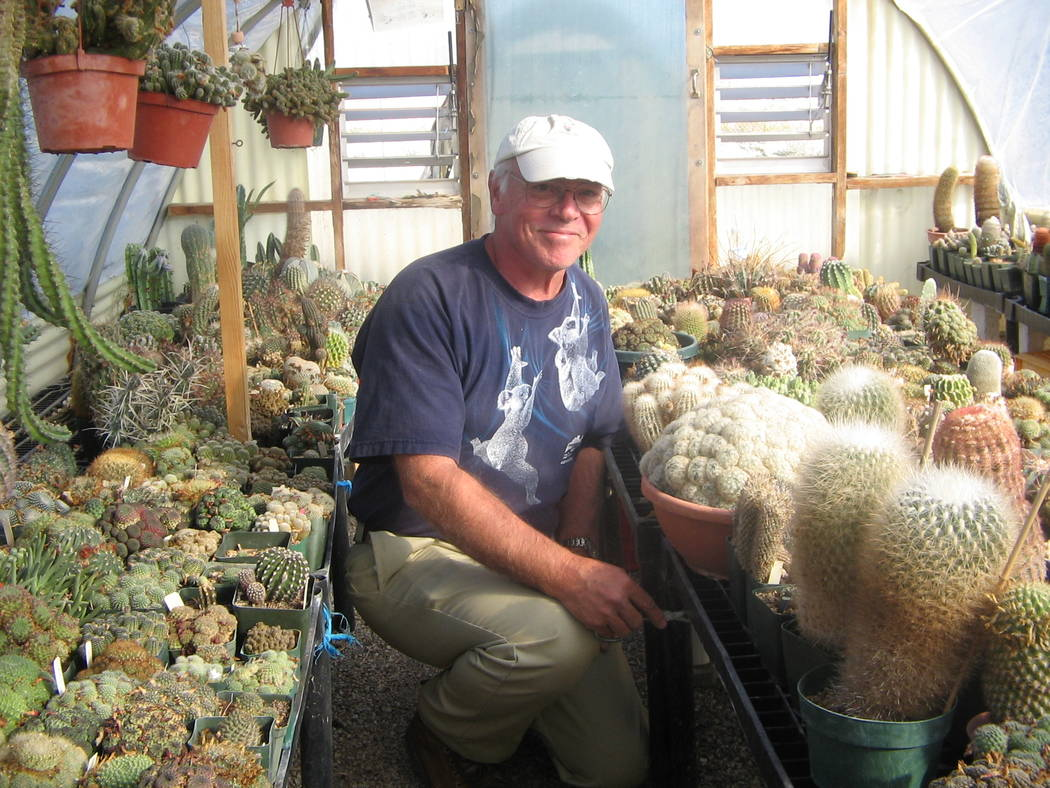 Brenda Klinger/Special to the Pahrump Valley Times  Dr. Gerry Henseler in one of the climate-controlled greenhouses he designed and built for his cactus plants.