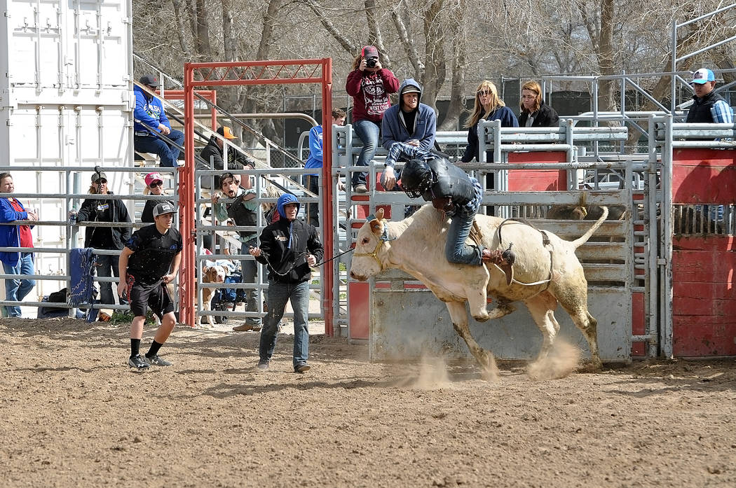 Horace Langford Jr. / Pahrump Valley Times - PVHS Rodeo An unknown bull rider rides a 2,000-pound bull during the high school rodeo practice sessions that take place usually on Sundays around 12 p ...