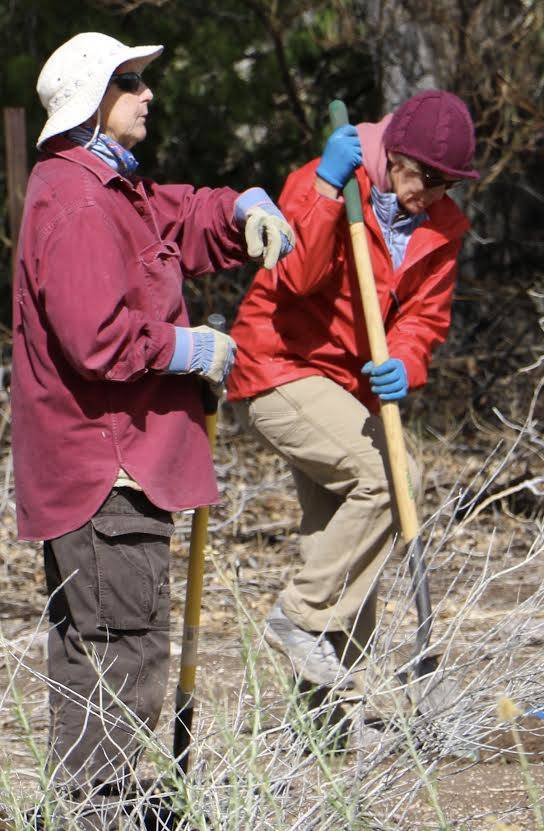 "Jo Poe, left, and Crissi Hachinski take part at a volunteer planting event Saturday at the Nature Conservancy's Torrance Ranch Preserve, home to Nevada's newest nectar plant ""way station"" for migr ..."