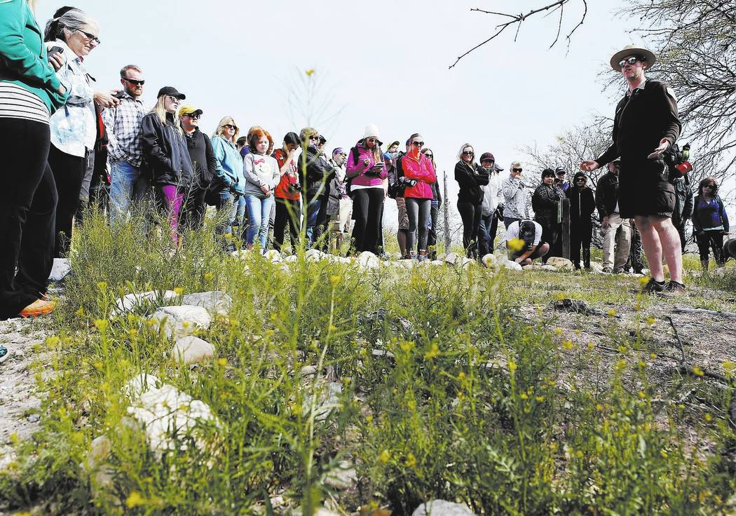 Christian K. Lee Las Vegas Review-Journal  Park Interpreter David Low, right, shows visitors wild radish on a hiking tour that he is leading at the Spring Mountain Ranch State Park on Sunday, Apri ...