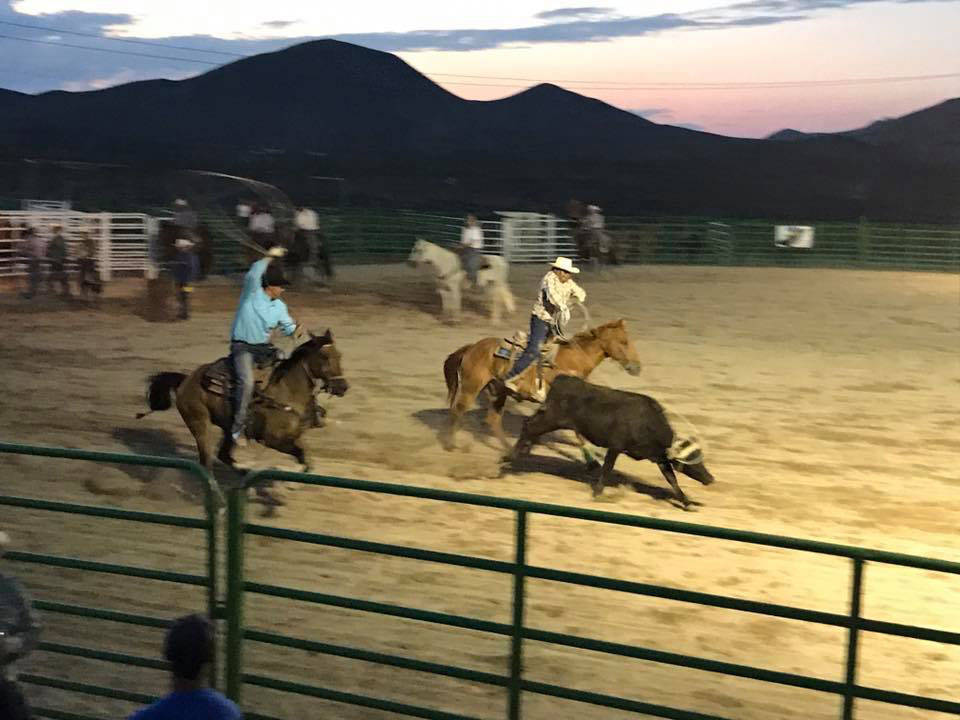Kat Galli/Town of Tonopah Team roping competitions go on as night falls at the Tonopah Rodeo Grounds. The main event occurred July 15-16.