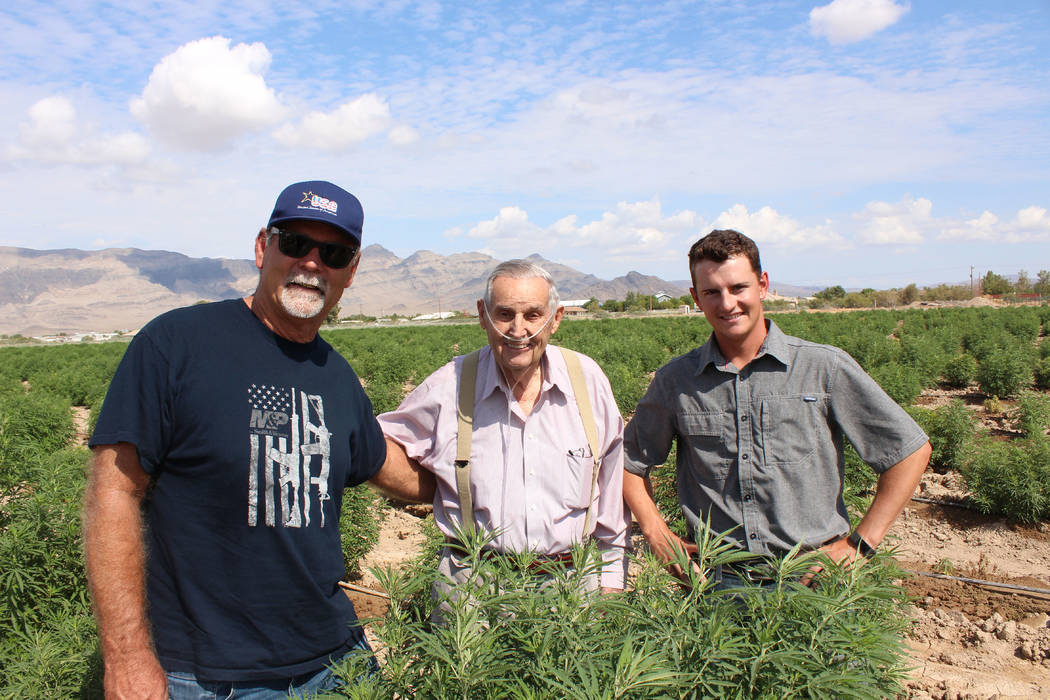 Jeffrey Meehan/Pahrump Valley Times  Dan Harris (left), Hollis Harris (middle) stand at the family's 10-acre industrial hemp farm at Harris Farm and Blagg roads on July 25, 2017. Warren Jessop (ri ...