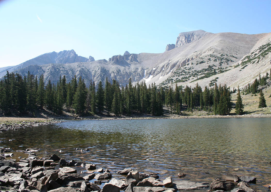 Deborah Wall/Special to the Pahrump Valley Times The Alpine Lakes Loop Trail takes hikers through a forest of Englemann spruce and limber pine with many perennial streams.
