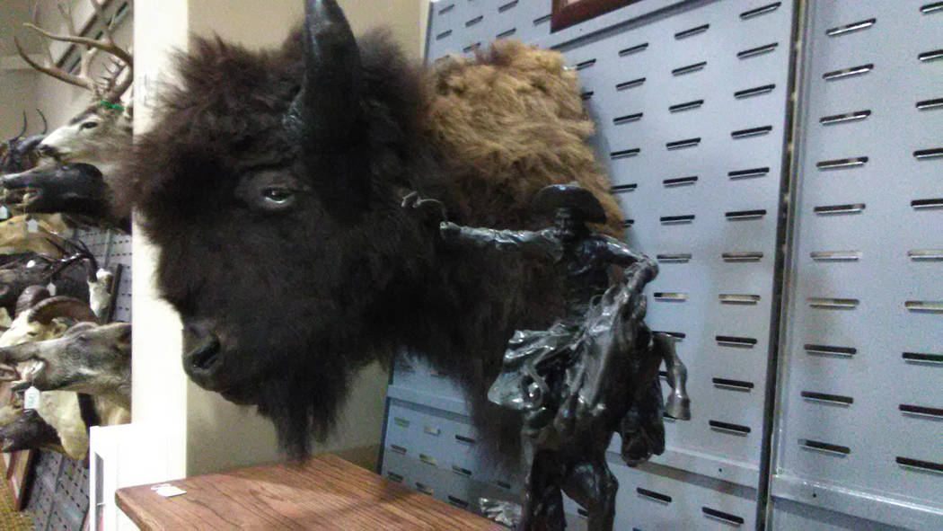 Selwyn Harris/Pahrump Valley Times  More than 390 items were auctioned off last Saturday including original Fredric Remington bronze sculptures and numerous wild game mounts. Many of the items hai ...