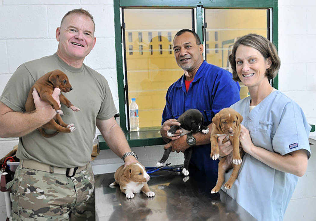 Sgt. Walter H. Lowell/Nevada National Guard  Lt. Col. Howard Gobble (left), the director of veterinary services for Public Health Command, Pacific, a Tongan veterinary tech (center) and Maj. Kimbe ...