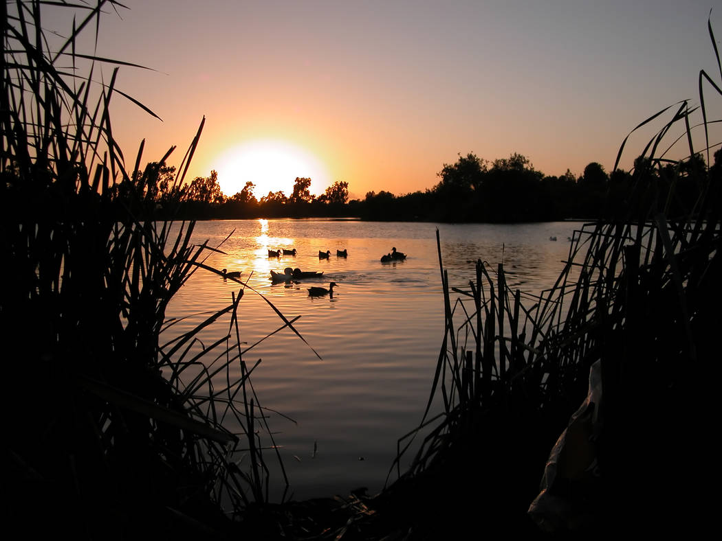 Gary Bennett/Special to the Pahrump Valley Times The sun sets at Guajome Lake Regional Park at 3000 Guajome Lake Road in Oceanside, California. The spot is also good for camping out.