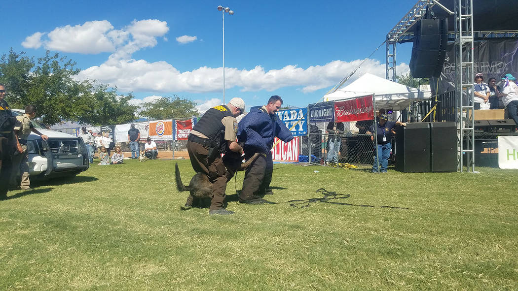 David Jacobs/Pahrump Valley Times K-9 Deputy Baz in action during a demonstration Saturday, Sept. 23 at the Pahrump Fall Festival in Petrack Park. Deputy Baz of the Nye County Sheriff's Office is  ...