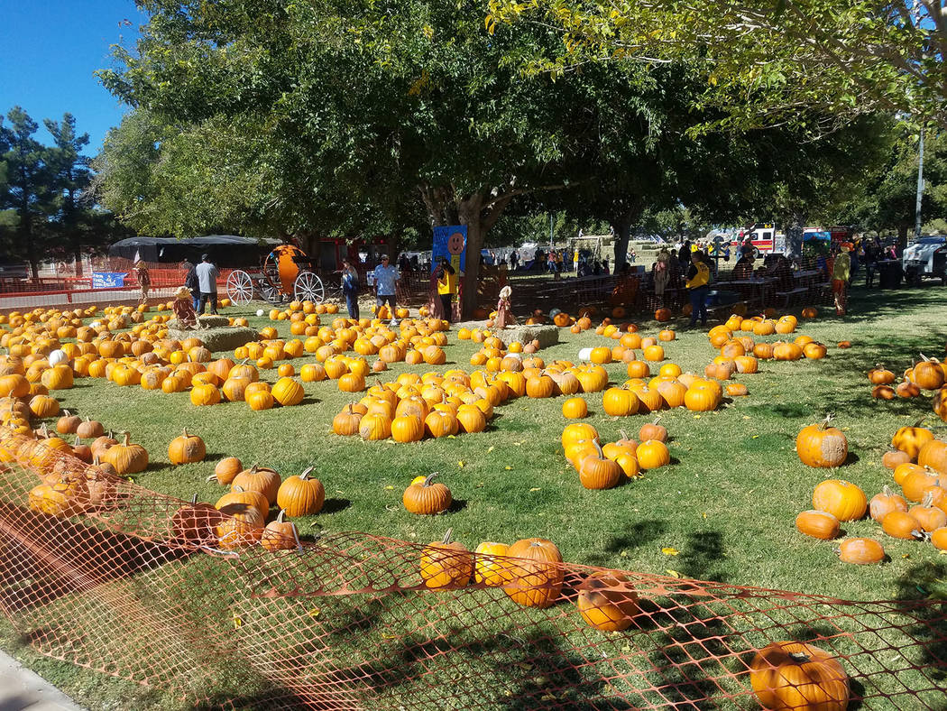 David Jacobs/Pahrump Valley Times Pumpkins fill a grassy area as shown on Saturday, Oct. 21 at Ian Deutch Memorial Park in Pahrump. Pumpkin Days' three-day run was Oct. 20-22.