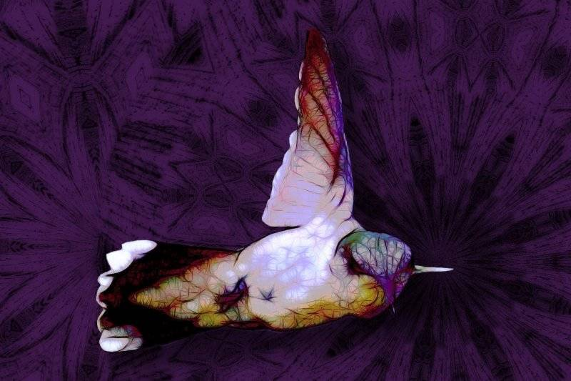 """""""Amethyst Flyer"""", an original artwork by Nancy Good, will be up for silent auction at Firefighter bazaar in Tecopa October 28th."""