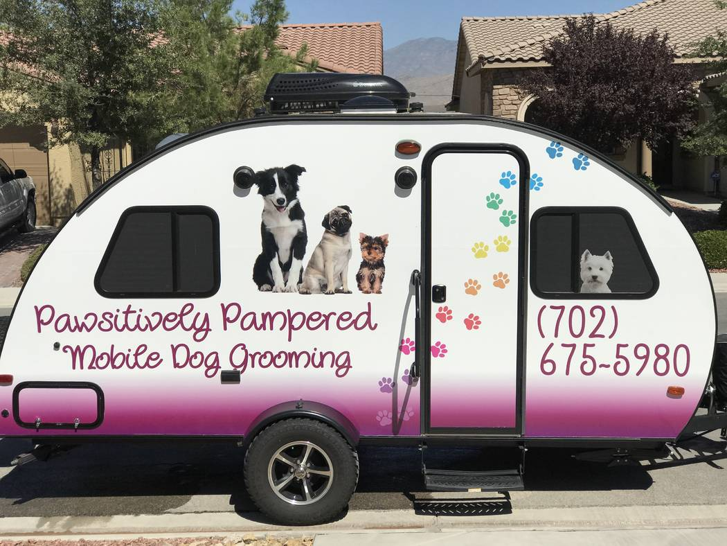 Business profile: Jeanne Johansson, Pawsitively Pampered Mobile Dog Grooming