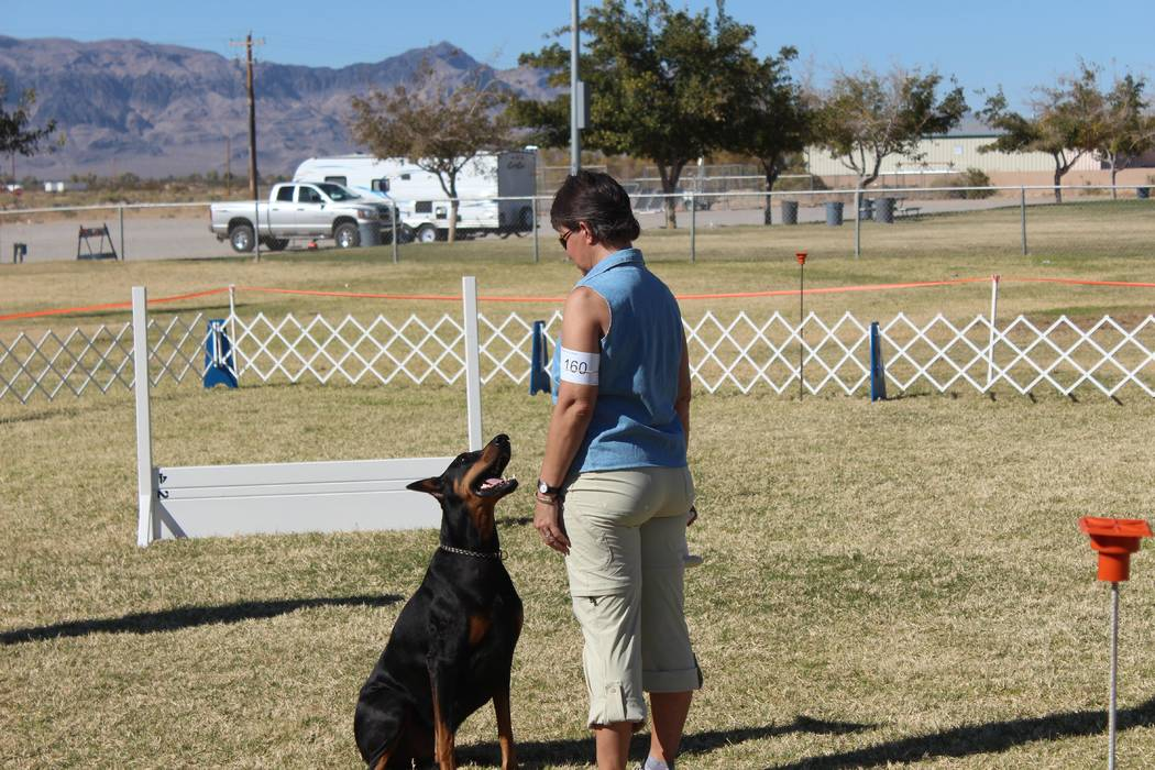 Jeffrey Meehan/Pahrump Valley Times  Janet Wagner instructs her doberman Bakar's Ready for the Ride in the ring at Pahrump Valley Obedience Club's 10th Annual Obedience and Rally Trials on Oct. 27 ...