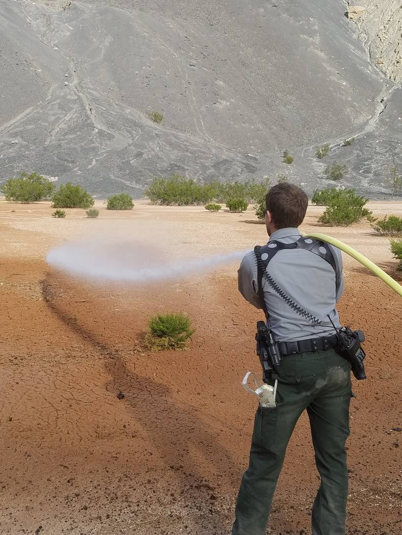 A park ranger uses water to erase graffiti from the bottom of Ubehebe Crater in Death Valley National Park on Nov. 7. National Park Service
