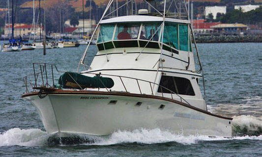 Special to the Pahrump Valley Times The vessel Reel Champion carried a crew of several ex-marines from H&M Landing in San Diego. The boat was skippered by Gary Abbamonte, with he and the rest  ...