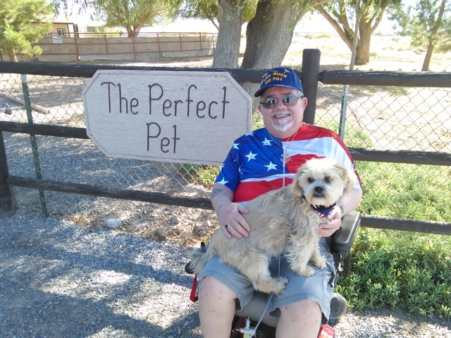 "Retired Navy Veteran Dennis ""Doc"" Watkins prepares to take his new best friend 'Lil Dude' to a local groomer on Thursday. Watkins, who recently lost his cat of 17 years said he and the dog ..."