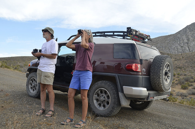 Laura Cunningham and Kevin Emmerich, founders of Basin and Range Watch, a Beatty, Nevada-based non-profit dedicated to conservation of the deserts in Nevada and California observe a possible nesti ...