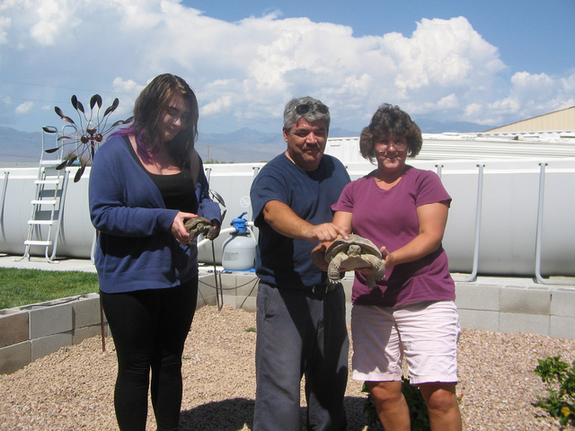 """A trio of tortoise lovers, from left, is Amanda """"Mandy"""" Jones with her Russian tortoise Cecelia, and Jerry Foster and Heidi Hill with Shelly, a Mojave desert tortoise adopted from the Tortoise Gro ..."""