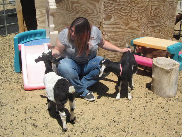 Erica Johnston, owner/instructor at RNG Farms uses all the different animals on the farm and not just horses to help individuals with special needs. Brenda M. Klinger/Special to the Pahrump Valley ...