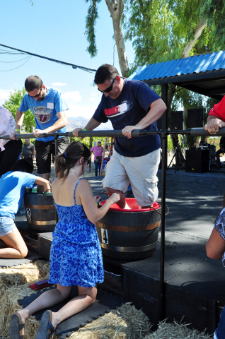 Horace Langford Jr./Pahrump Valley Times Teams go full steam ahead as they stomp grapes during last year's Grape Stomp competition at Pahrump Valley Winery. The event returns on Saturday and Sunda ...