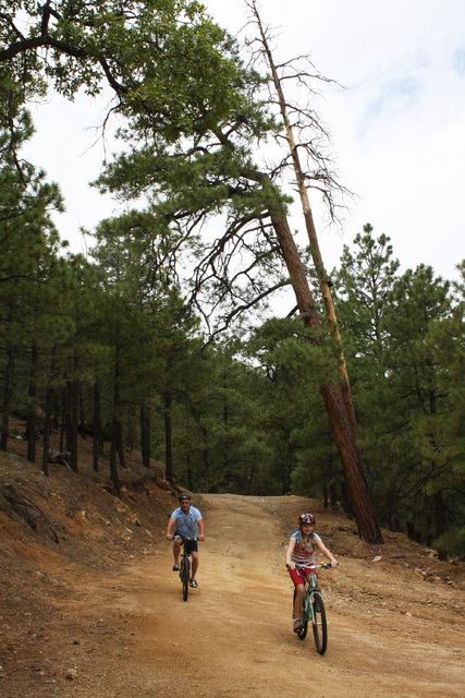 There are about ten miles of trails in Hualapai Mountain Park. The park even offers an ATV trailhead with an unloading ramp, parking and campsites. Here riders can access hundreds of miles of good ...