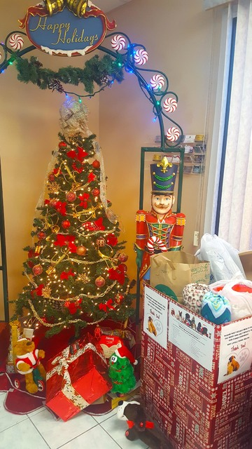 So far, two large boxes have been filled to the brim with pet supplies at the entrance of Access Realty. The realty company is part of the Pahrump Real Estate Advisory Council's effort to suppor ...