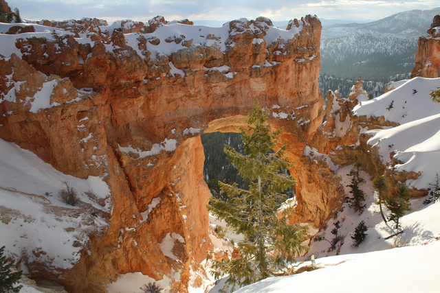 Hoodoos, pinnacles, spires and arches fill the natural amphitheaters at Bryce Canyon National Park. Snowshoeing and cross-country skiing are the most popular ways to travel along the rim in winter ...