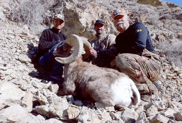 Larry Strickland, far right, poses with the big ram he fell with a .338 Winchester Magnum late last year. He had waited 37 years for the elusive Nevada Desert Bighorn Sheep tag. Special to the Pah ...