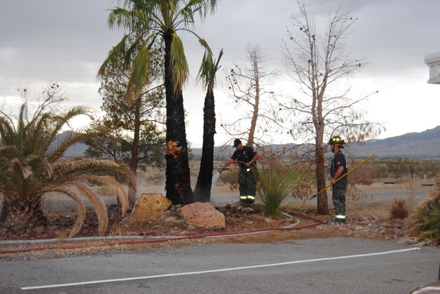 Several palm trees were set ablaze following a lightning strike along Lockspur Avenue last Wednesday. No injuries were reported, but several of the trees sustained burns and scorch marks as a resu ...