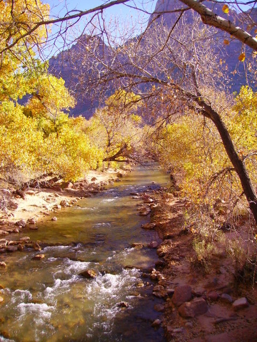 Now is a perfect time for a Zion adventure