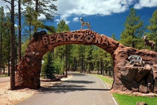 Gary Bennett/Special to the Pahrump Valley Times Bearizona wildlife park, located at 1500 Historic Route 66 in Williams, is open all year, weather permitting. There is a fee to get in but it is wo ...