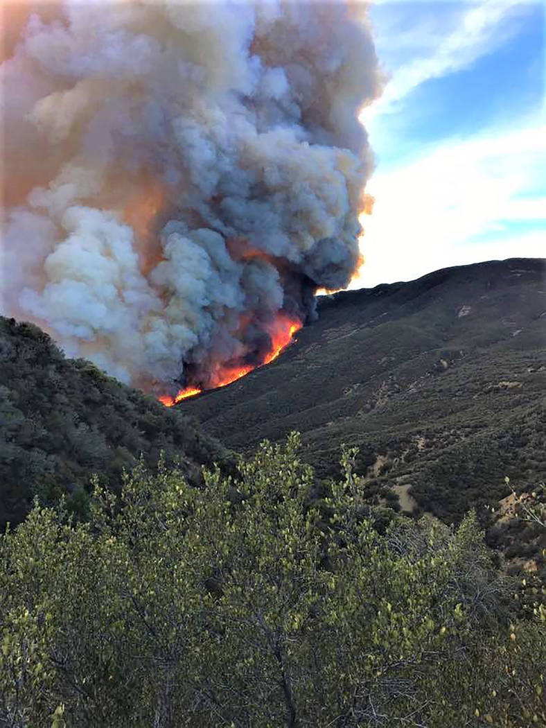 showing extreme fire behavior - HD788×1050