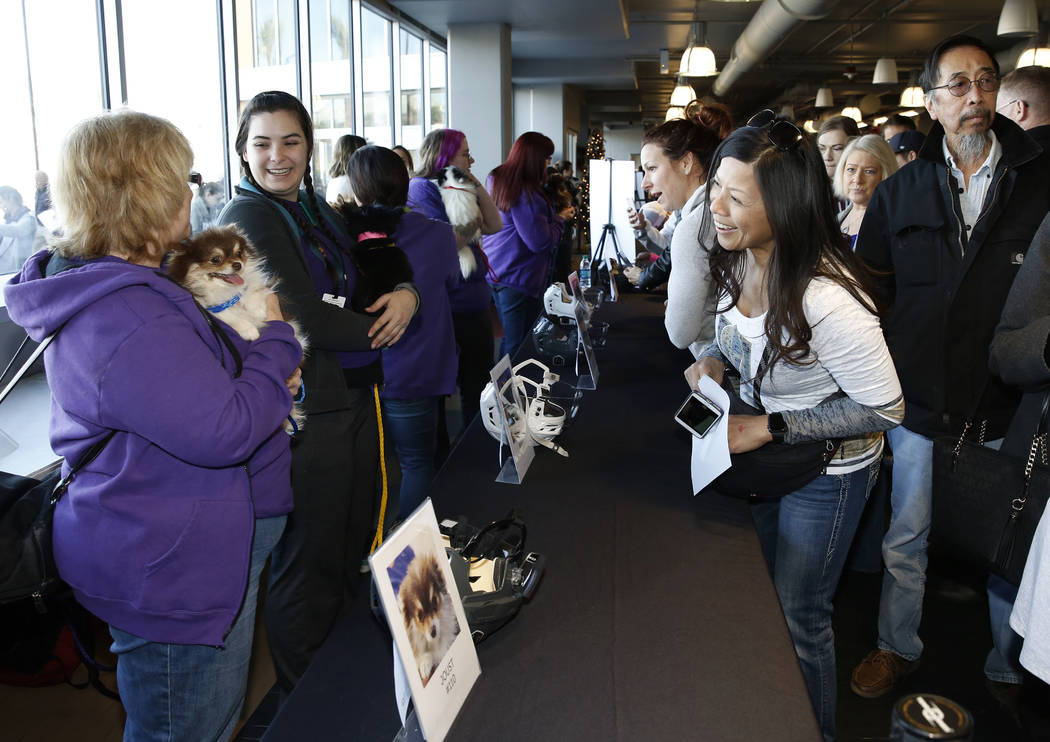 People, including Haydee Ratner, right, watch Pomeranian dogs at City National Arena Monday, Dec. 18, 2017, in Las Vegas. The Vegas Golden Knights and the Animal Foundation held a Pucks for Paws c ...