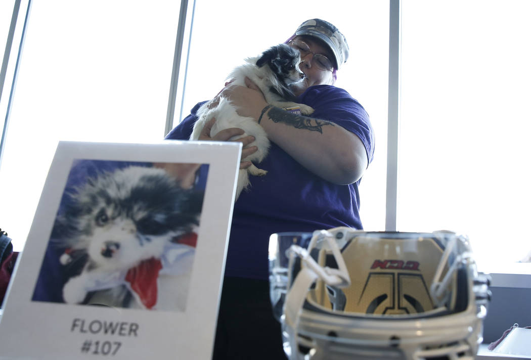 Heather Cleveland holds Flower at City National Arena Monday, Dec. 18, 2017, in Las Vegas. The Vegas Golden Knights and the Animal Foundation held a Pucks for Paws community event to kick off the  ...