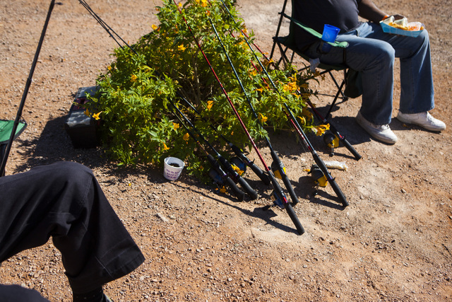 Miranda Alam/Las Vegas Review-Journal  Fishing poles rest on a bush during a senior fishing derby held at Lorenzi Park in Las Vegas in 2016. A federal report found that total expenditures by angle ...