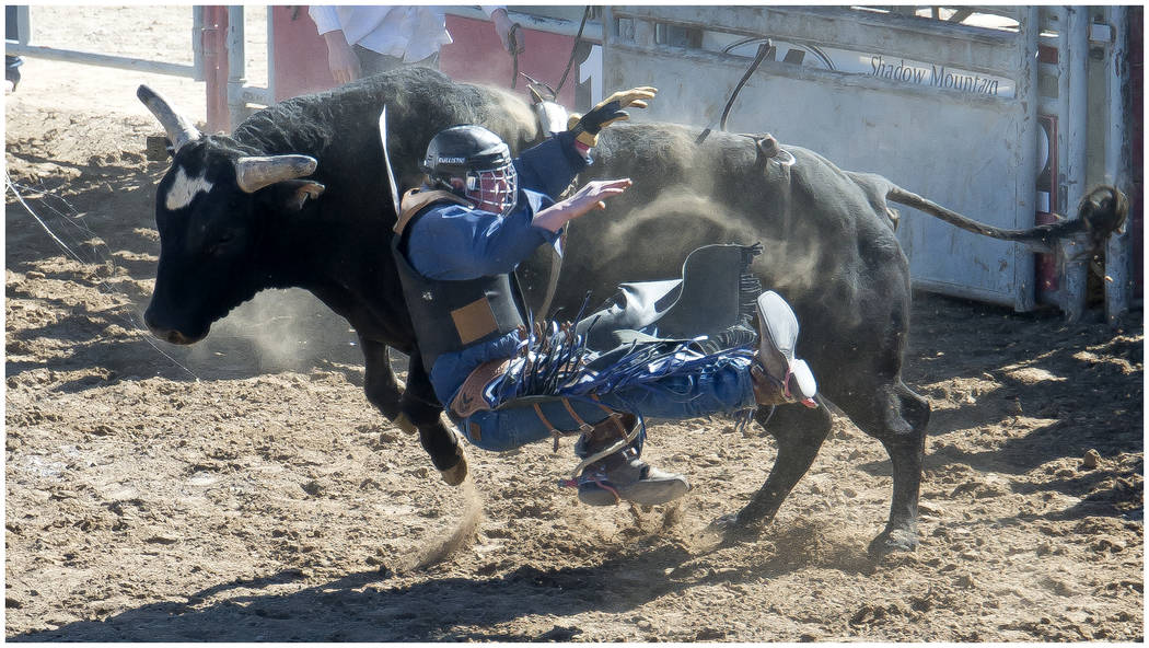 Drew Hall/Special to the Pahrump Valley Times A participant prepares himself for impact with the ground during the Nevada State High School Rodeo Association's Feb. 24 event at McCullough Arena.