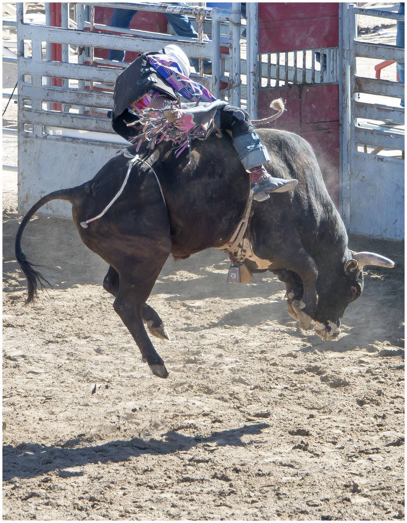 Drew Hall/Special to the Pahrump Valley Times Bull riding was one of 14 events contested Feb. 24 at McCullough Arena as the Nevada State High School Rodeo Association returned to Pahrump.