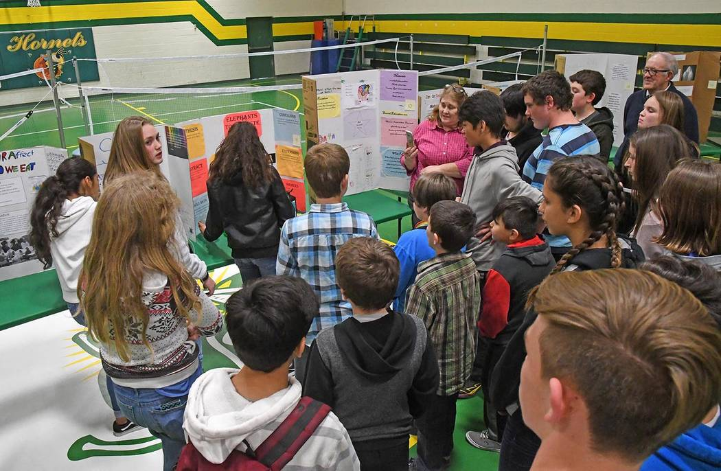 Richard Stephens/Special to the Pahrump Valley Times The fair, held in the school gym, featured some two dozen student projects on an amazing, and often amusing, range of fields of inquiry.