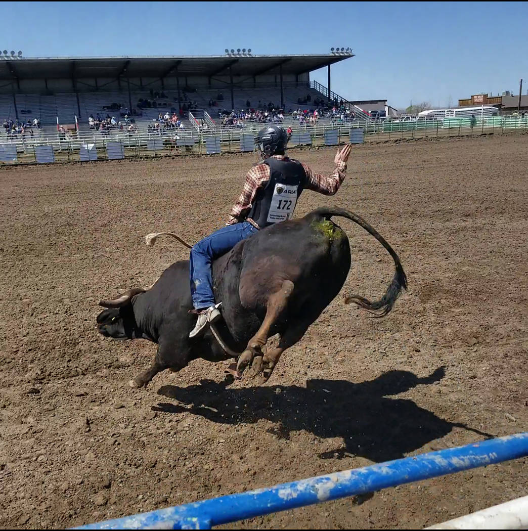 Buddy Krebs/Special to the Pahrump Valley Times Senior Taylor Clasen was one of three Pahrump Valley rodeo team members to compete in bull riding April 7-8 at a high school rodeo in Fallon.
