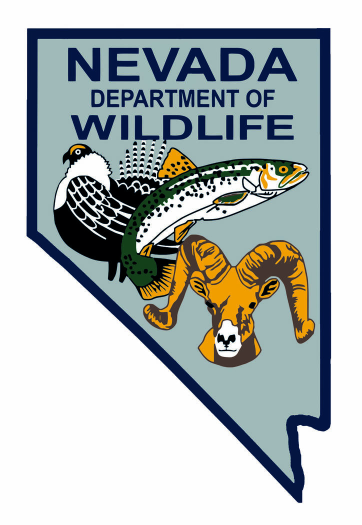 Nevada Department of Wildlife Applications need to be submitted by 11 p.m. that day on the department's new license site at ndowlicensing.com, the Nevada Department of Wildlife said.