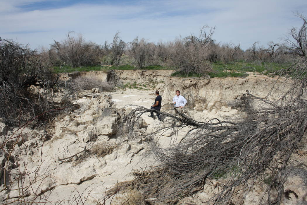 Victor Fuentes stands in the middle of the swath of land that had been carved away by repeated floods in this 2016 file photo, courtesy of Nevada Policy Research Institute. The Fuenteses are deman ...