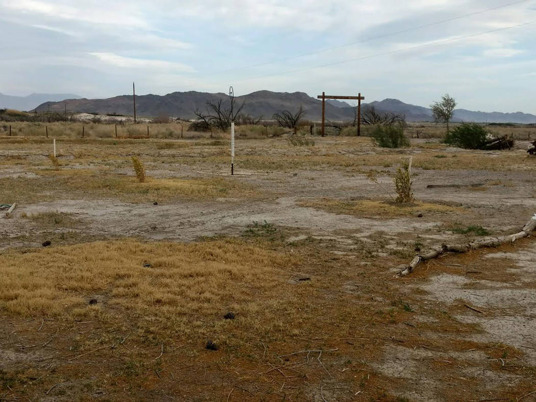 Special to the Pahrump Valley Times Annette Fuentes snapped this photo of her property, which shows dry, barren land, on April 11. The land was once much more lush but lack of water has devastated ...