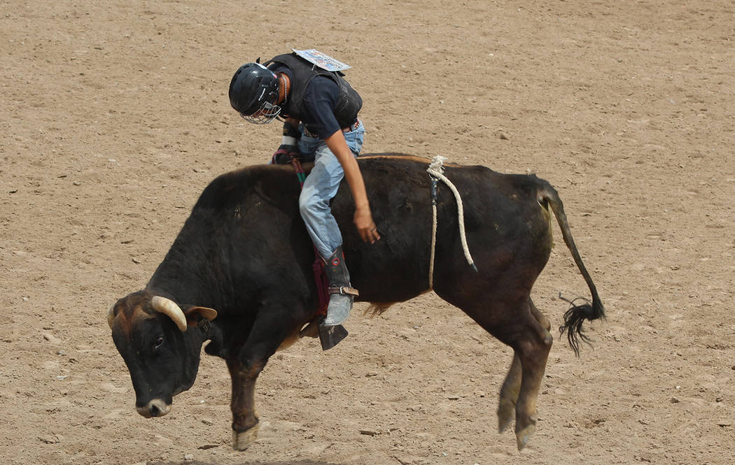 Tom Rysinski/Pahrump Valley Times Pahrump Valley junior Tye Hardy qualified in bull riding and saddle bronc riding for the National High School Finals Rodeo in Rock Springs, Wyoming.