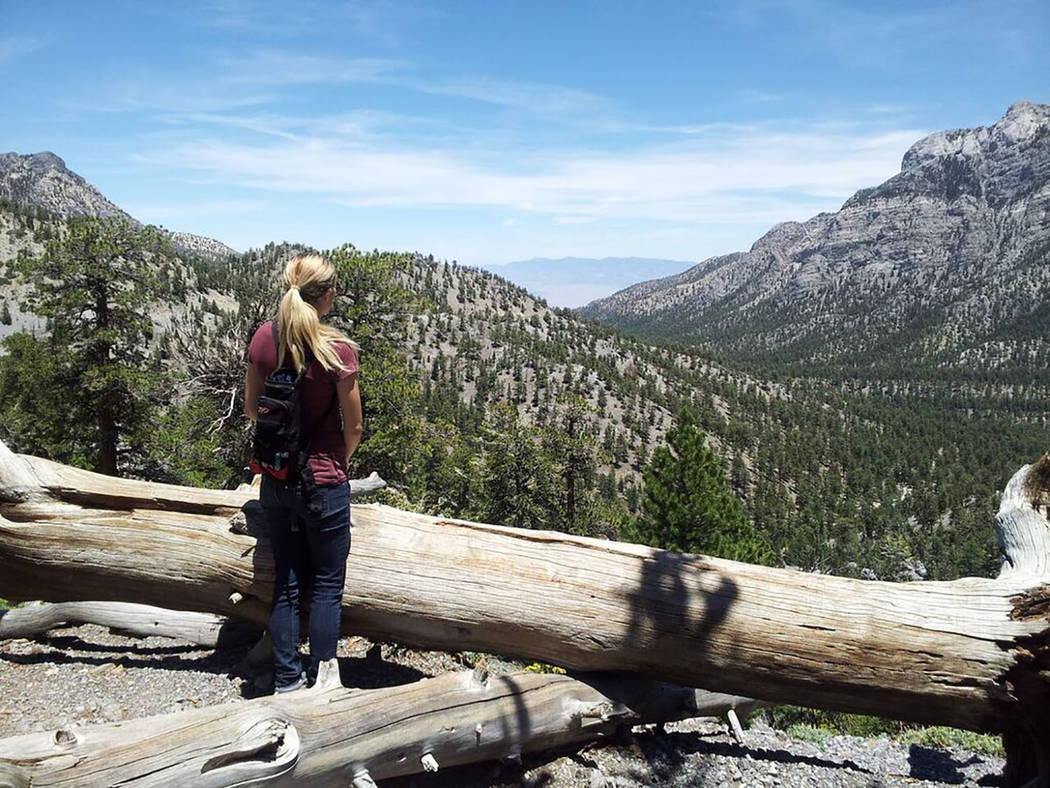 Lee Canyon/Special to the Pahrump Valley Times A hiker enjoys a panoramic view looking down Lee Canyon. Several miles of trails are accessible from near the resort, and many more trails are availa ...