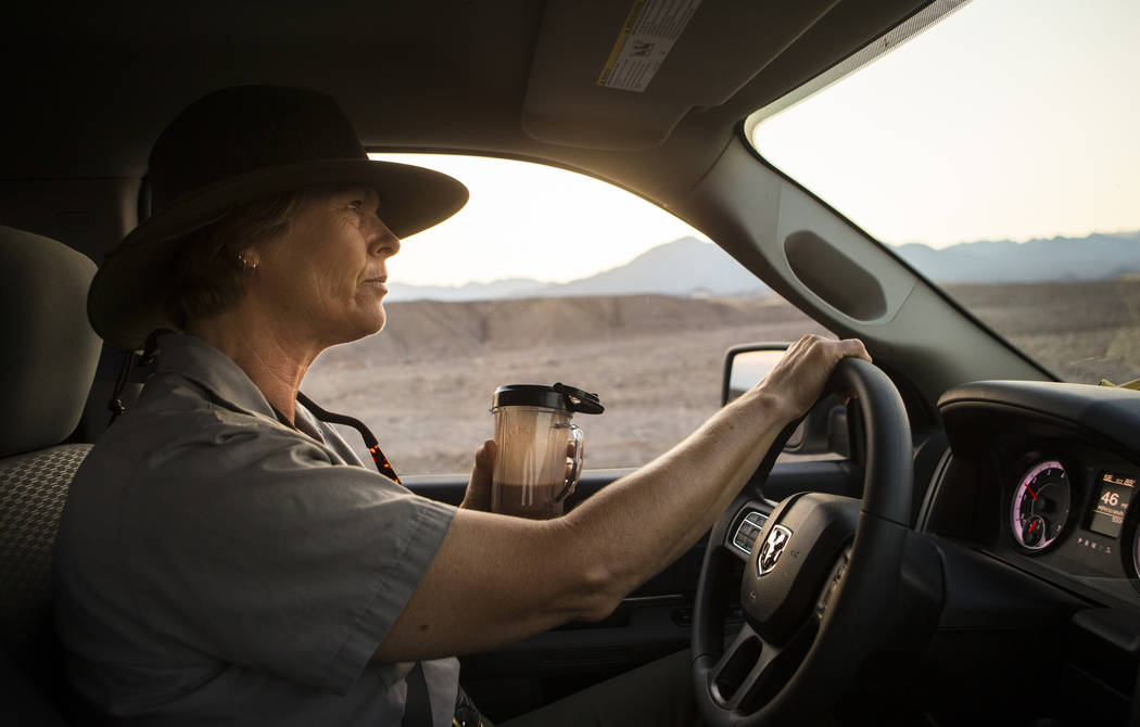 Death Valley National Park custodian Terry Eddington drinks a smoothie while driving to the visitor center at the start of her shift in Death Valley National Park, Calif., on Tuesday, Aug. 7, 2018 ...