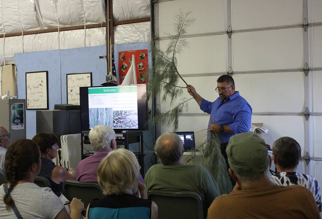 Robin Hebrock/Pahrump Valley Times Nevada Department of Agriculture Noxious Weeds Coordinator Sean Gephart shows saltcedar workshop attendees the difference between the types of saltcedar commonly ...