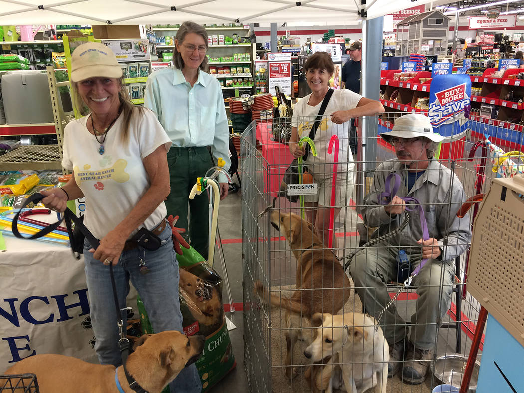 Robin Hebrock/Pahrump Valley Times West Star Animal Rescue staff and volunteers posed for a quick photograph with three of the canines available for adoption during the Tractor Supply Out Here Wit ...