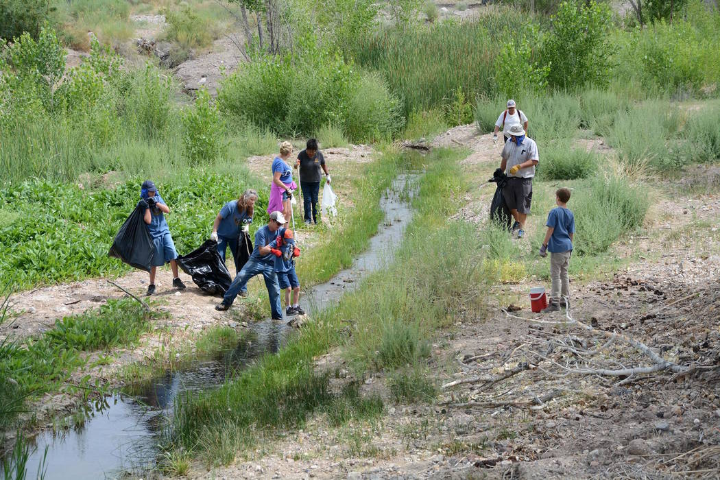 Three teams including 25 volunteers gathered Saturday, June 11, to clean areas along the Amargosa River in Beatty and at the Nature Conservancy's Torrance Ranch Preserve. Richard Stephens/Specia ...