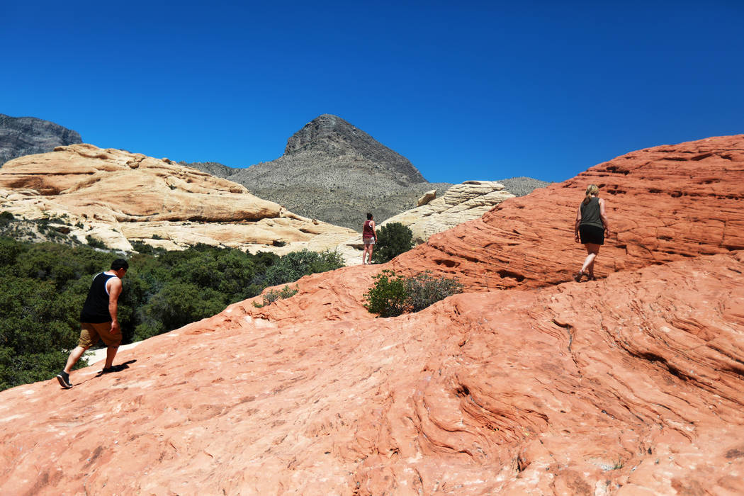 Andrea Cornejo/Las Vegas Review-Journal Red Rock Campground is located within Red Rock Canyon National Conservation Area, approximately two miles east of the Visitor Center on Nevada Highway 159 ( ...